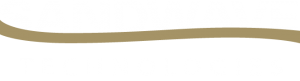 Sandwave-Technlogies-Logo-Big-Reversed